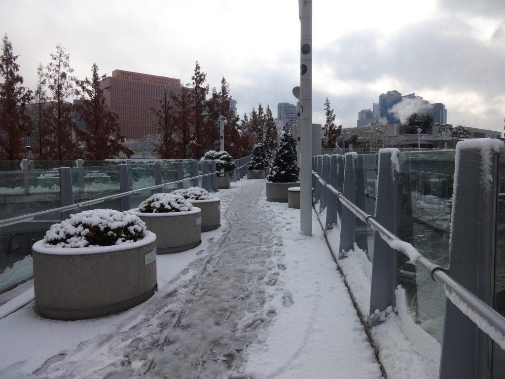 ソウル路 雪