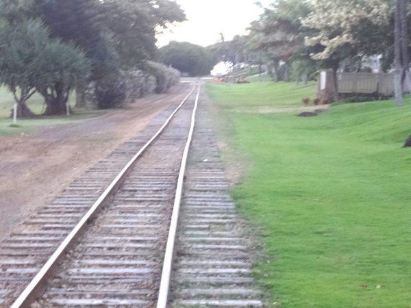 アウラニ コオリナステーション 線路