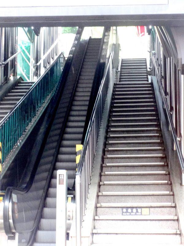 龍頭山公園 エレベーター 階段