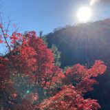 布引の滝 ハイキング