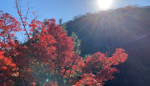 【神戸・布引の滝ハイキング】山で食べるカップ麺は美味しかった!子連れ・初心者におすすめ